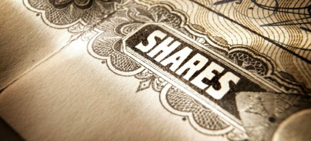 Do you wish to make an offer for sale of shares to the public ?