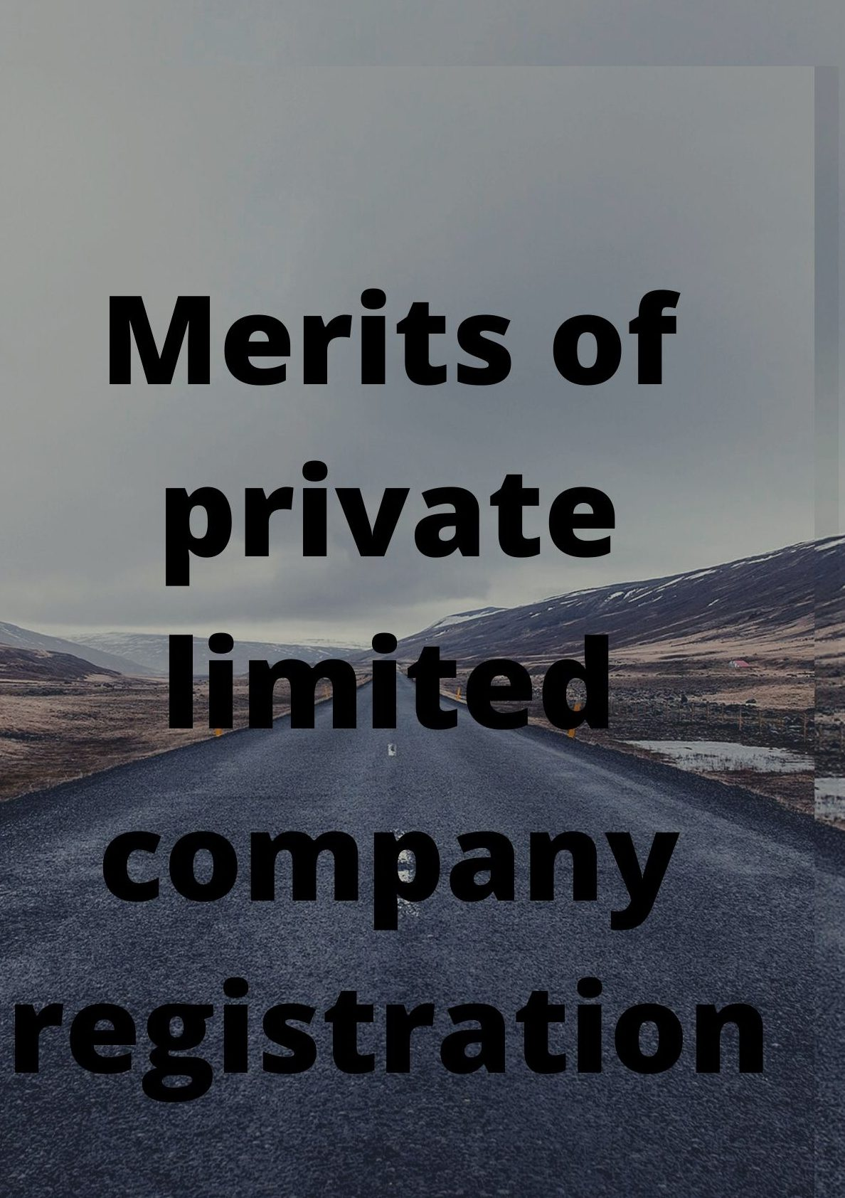 merits of private limited company registration